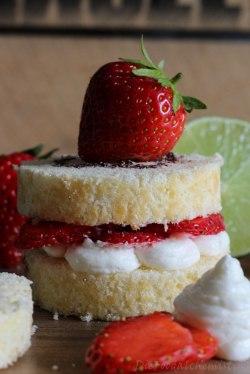 BiscuitSandwich10