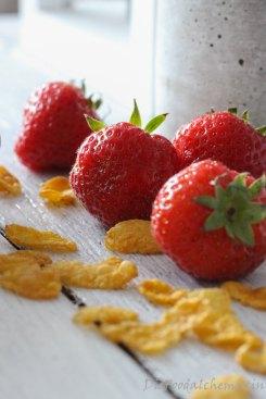 ErdbeerKokosKnusperdessert6