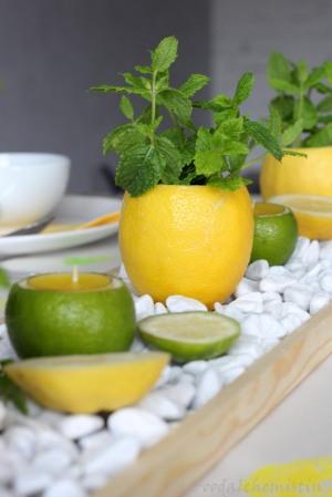 Zitronen Minz Tischdeko Diefoodalchemistin