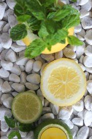 ZitronenMinzDeko15