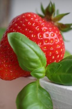 Erdbeerlimes4