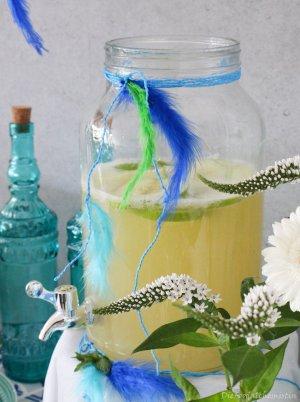 Apfel-Minz-Limo4