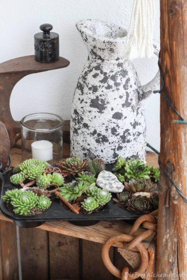 Succulentenmuffindeko6