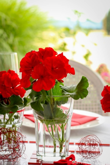 Red-Dinner-Table7