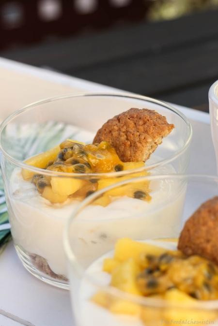Joghurt-Mango-Cremedessert3
