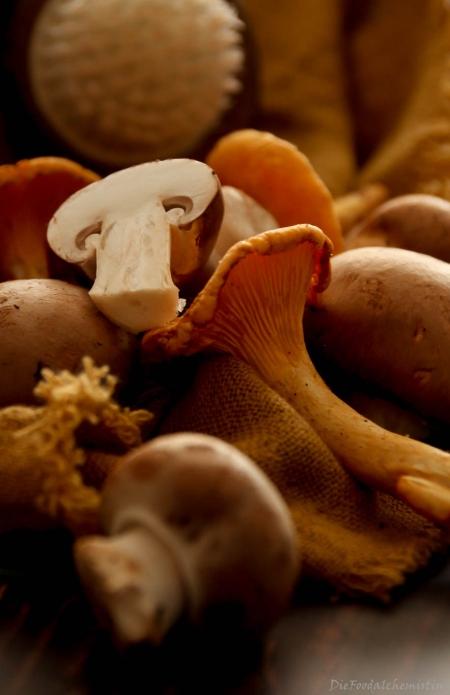 Blätterteigecken-Pilze3